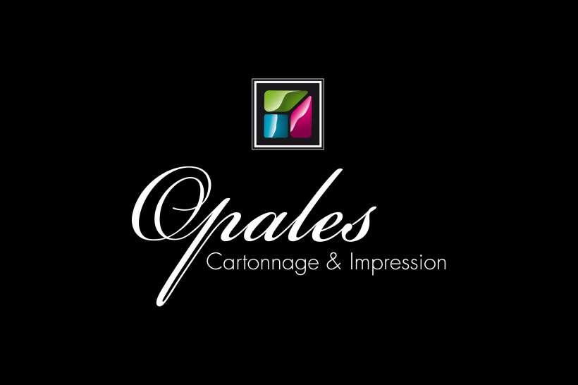 LOGO-OPALES-Cartonnage.jpg